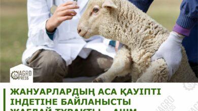 Photo of Ситуация по особо опасным болезням животных остается стабильной – МСХ