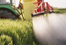 Photo of Казахстанским производителям удобрений сохранили рынок Украины