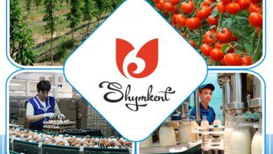 Photo of В Шымкенте реализуется 18 сельскохозяйственных проектов