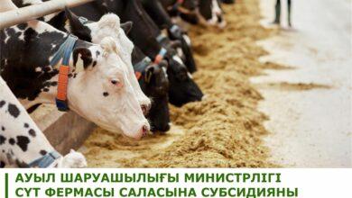 Photo of Минсельхоз внес изменения в Правила субсидирования развития племенного животноводства