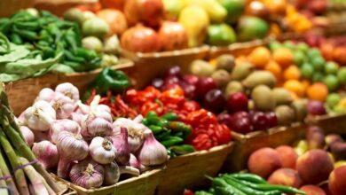 Photo of В Шымкенте возобновит работу ярмарка сельскохозяйственной продукции