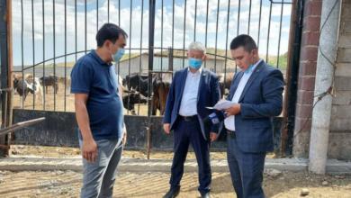 Photo of Шымкент: В Абайском районе насчитывается около 550 фермерских хозяйств