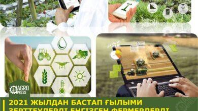Photo of С 2021 года Минсельхоз планирует ввести субсидирование затрат фермеров на внедрение научных разработок