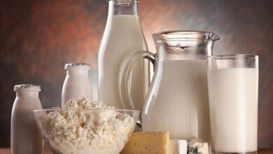 Photo of Казахстанские производители молочной продукции повышают свои компетенции для успешного выхода на китайский рынок